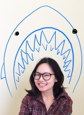 Debut Aussie kidlit writer signed with US Agent: Interview with Remy Lai